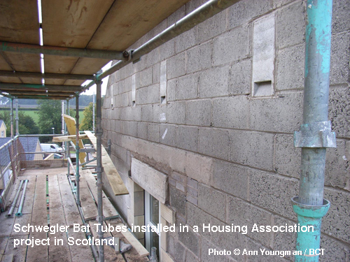 Schwegler Bat Tubes installed in a Housing Association project in Scotland
